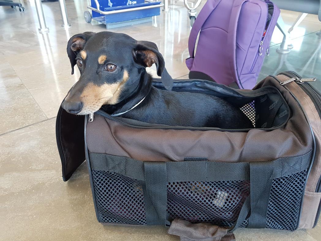 latam equipaje de mano argentina